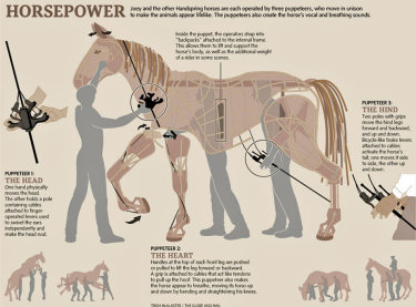 Horsepower: the War Horse puppets and puppeteers infographic by Trish Mcalaster / The Globe and Mail